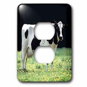 Jazzy Wallplates Single Duplex Wallplate With Holstein Cow