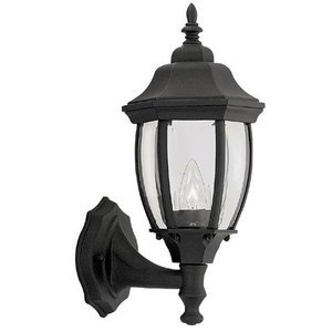 Designers Fountain Exterior Wall Lantern in Black with Clear