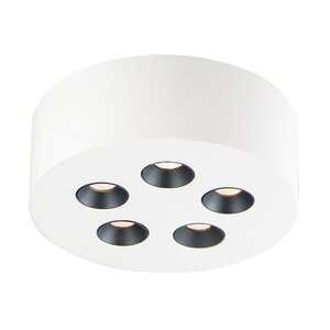 ET2 Lighting 5-Light LED Flush Mount in White
