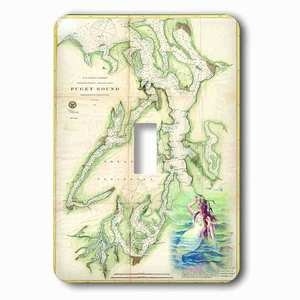 Jazzy Wallplates Single Toggle Wallplate With Print Of Vintage Nautical Puget Sound Map