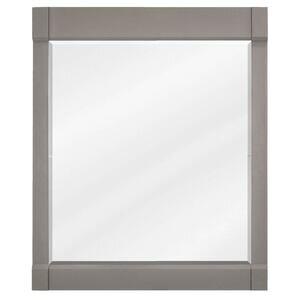 "Jeffrey Alexander 28"" W x 1-1/4"" D x 34"" H Grey Astoria Mirror"