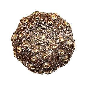 Modern Objects Urchin Knob in Antique Brass