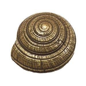 Modern Objects Mini Sundial Knob in Antique Brass