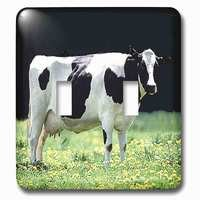 Jazzy Wallplates - Animals - Double Toggle Wallplate With Holstein Cow