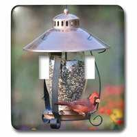 Jazzy Wallplates - Animals - Double Toggle Wall Plate With Northern Cardinal On Copper Lantern Hopper Bird Feeder