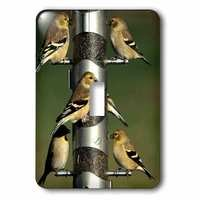 Jazzy Wallplates - Animals - Single Toggle Wallplate With American Goldfinches At Thistle Tube Feeder