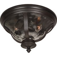 "Craftmade - Exterior Frances Lighting - 14"" Flush Mount Exterior Light in Oiled Bronze with Hammered Clear Glass"