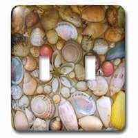 Jazzy Wallplates - Nautical - Double Toggle Wallplate With Seashells Photography Colorful Sea Shells Pattern Sea Ocean Seaside Nautical Beach Feel Decor