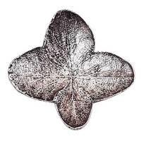 Modern Objects - Pinecones & Jasmine - Pee Gee Knob in Antique Brass