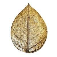 Modern Objects - Pinecones & Jasmine - Bishop Cap Knob in Antique Brass
