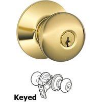Schlage Door Hardware - Plymouth Door Knobs - F51A Series - Keyed Plymouth Door Knob in Lifetime Bright Brass