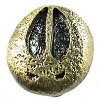 Sierra Lifestyles - Wildlife Design - Moose Track Knob in Antique Brass