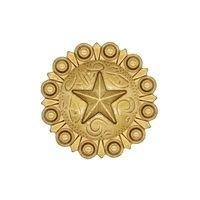 Wild Western Hardware - Antique Brass - Star Conch Knob Antique Brass