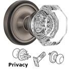 Nostalgic Warehouse - Privacy Knob - Classic Rose with Waldorf Crystal Door Knob in Antique Pewter