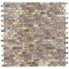 "Stellar Tile - Mosaic - 1/2"" x 1"" Shell Mosaic Tile in Perla"