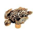 Turtle Knob in Antique Gold